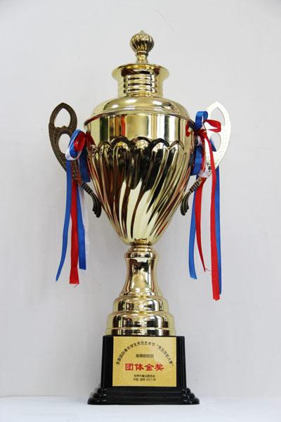 国家级荣誉--团体金奖奖杯.jpg