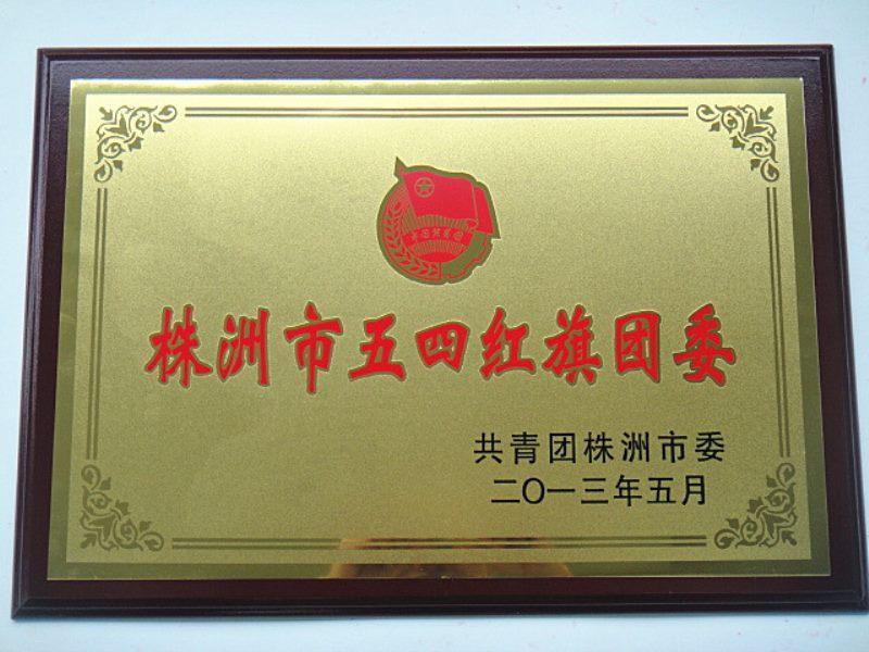 市级荣誉--株洲市五四红旗团委.jpg