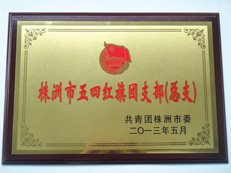 市级荣誉--株洲市五四红旗团支部.jpg